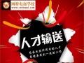 温州跨境电商培训_亚马逊_速卖通_wish培训