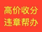 武汉三镇高价收驾照积分,违章代办,五年车务靠谱
