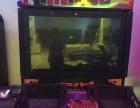 凉山回收大型游戏机动漫城