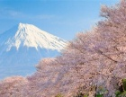 遵义专业日语培训 留学日语 高考日语等