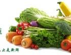 郑州蔬菜配送