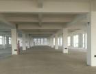 金东工业园 1000平方厂房 出租