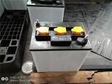 镇江知名品牌旅游观光车电池供应商 河北电动观光车蓄电池