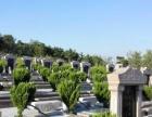 青岛公墓陵园办事处咨询服务价格优惠中