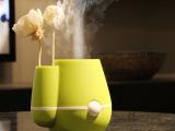 伊品堂 花瓶加湿器 办公室家用超静音 迷你USB加湿器