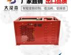 电动增程器选择大漠森5KW60V27极纯铜电芯稳压变频发电机