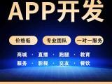 手機APP小程序開發定制作訂做網站建設計