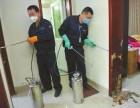 深圳市南山区白蚁公司-灭治白蚁-预防白蚁-除臭虫