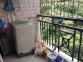 城西丽景雅苑电梯两房