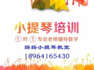 上海小提琴一对一教学(一次一收费)