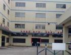 水口马安标准工业园1650平方出租
