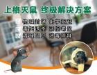 上海企业灭白蚁灭鼠多少钱除蟑螂公司