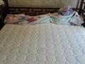 专业沙发清洗、布艺沙发清洗、纯皮沙发清洗、床垫清洗
