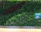 中建技术西安绿植墙 立体绿化
