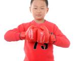 2014春秋款男童装批发 韩版纯棉抓毛卫衣 童卫衣 加厚卫衣