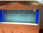 太仓鱼缸定做大型水族箱工程嵌墙式鱼缸