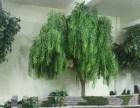仿真大树假树仿真柳树仿真大型植物装饰酒店大厅布景实木树干订做