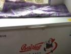 白雪冰柜BD/C_399F