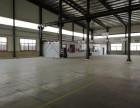 东光新建现代化厂房出租,有证,可环评