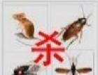 桂林赫鼎鸿灭鼠除虫有限公司