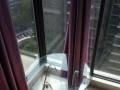 落地大阳台 阳光房 性价比超高 来到就住 就在樱花小公寓!
