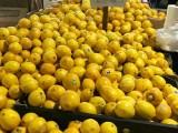 丹麦工厂招工年薪36-50万 包吃住,买保险
