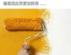 墙面粉刷,翻新,修补,贴壁纸,泥水工修补等等。