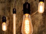 奥古E27大螺口爱迪生灯泡 复古光源创意个性造型暖光白炽灯钨丝灯