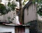 旧屋瓦顶维修与拆树