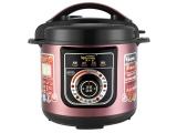 高壓鍋廠家定時預約多功能大容量4-6l家用電壓力鍋