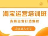 杭州商旗教育淘寶拼多多抖音運營培訓學習