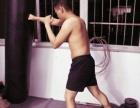 广州 一对一私教泰拳散打自由搏击 综合格斗特训