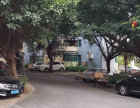 珠江半岛花园 中层两房 南向望花园 证过五年税少 可等社保珠江半