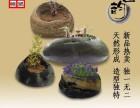 天和雕塑 现货原生态天然石头小花盆 个性创意鹅卵石