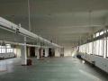 桐乡独门独院5000平厂房,可喷漆、印刷