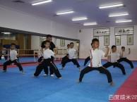 深圳市儿童武术培训班 免费试学wuduwushu.com