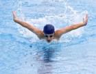江门专业游泳培训中心游泳俱乐部游泳长训班招生