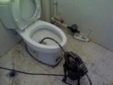 唐山世博广场专业疏通马桶 地漏 菜池维修上下水管坐便