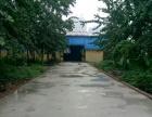 鑫港 北环路滏河大街交叉口西 厂房 1000平米