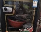 消毒柜和电饭煲