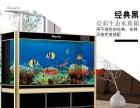 别墅鱼缸,高端鱼缸,鱼缸精美造景,底过滤鱼缸,免换水鱼缸