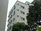 嘉欣电梯公寓公司