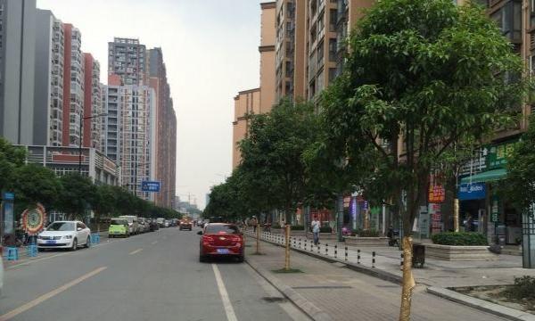 新都区有多少人口_家门口有条绿道是种什么体验 新都人告诉你