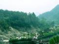 199元京山美人谷、绿林寨双汽二日游