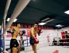 北京拳击培训班-北京房山拳击培训班- 北京长阳拳击培训班