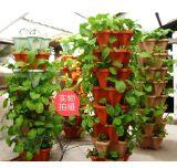 智能蔬菜种植设备 无土栽培设备