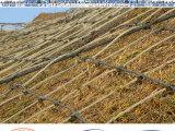 供应山体挂网 边坡防护网 钢丝绳网 柔性防护网 路基主动防护网