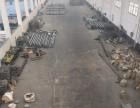 出租胶南王家楼工业园高度13米行车三部10T厂房车间3300
