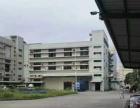 黄埔107国道边楼上新装修电商办公研发厂房招租