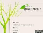 杭州淘宝美工培训班,打造数据分析型美工